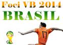 focivb2014